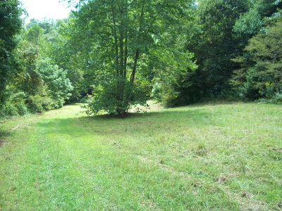 Carroll County, Grayson County Residential Lots & Land For Sale: Rainbow Trout Lane
