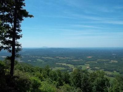 Hillsville VA Residential Lots & Land For Sale: $975,000