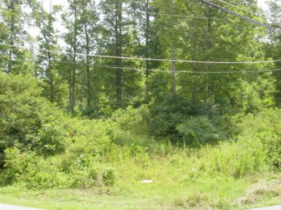 Abingdon Residential Lots & Land For Sale: Tr. 1 &2 Steinman Road
