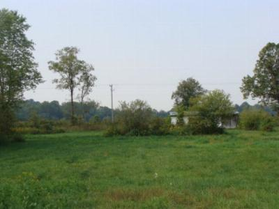 Max Meadows Residential Lots & Land For Sale: Tbd Chiswell Road