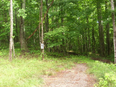 Residential Lots & Land For Sale: Tbd Willow Bend Drive