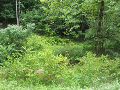 Grayson County Residential Lots & Land For Sale: Tbd Fox Creek Road
