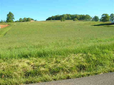 Wytheville Residential Lots & Land For Sale: Tbd Crocketts Cove Road
