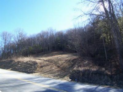 Carroll County, Grayson County Residential Lots & Land For Sale: Tbd Spring Vally Road
