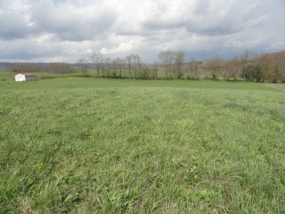 Marion Residential Lots & Land For Sale: Tbd Fox Valley Road