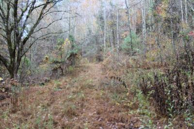 Abingdon Residential Lots & Land For Sale: Tr.10-12 Large Hollow Road