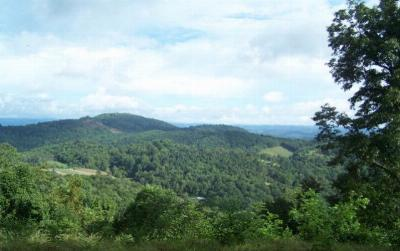 Elk Creek Residential Lots & Land For Sale: Tbd Rock Fence Road