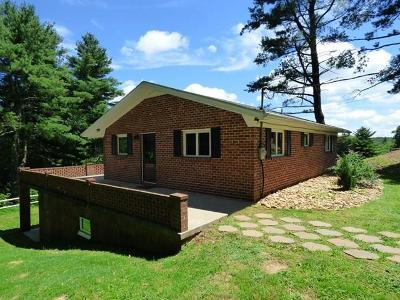 Carroll County Single Family Home For Sale: 373 Skyland Lakes Drive