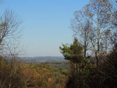 Grayson County Residential Lots & Land For Sale: Tbd Valleyhill Drive