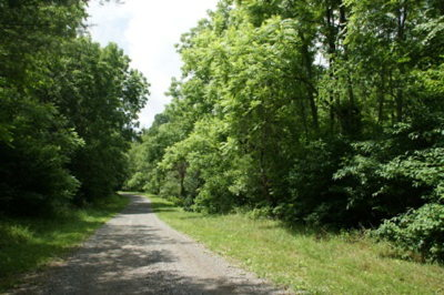 Carroll County, Grayson County Residential Lots & Land For Sale: Tbd Fallville Lane