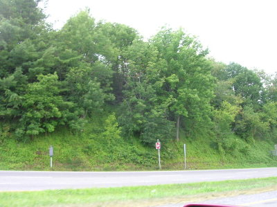 Max Meadows Residential Lots & Land For Sale: Tbd Rt 52 & Chapman Rd