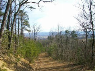 Chilhowie Residential Lots & Land For Sale: Middle Fork Road