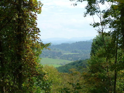 Grayson County Residential Lots & Land For Sale: Tbd Reservation Lane