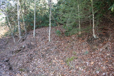 Damascus Residential Lots & Land For Sale: Tbd Pennington Branch Road Lot14b