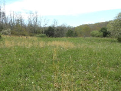 Bland Residential Lots & Land For Sale: Tbd Poor Valley Rd