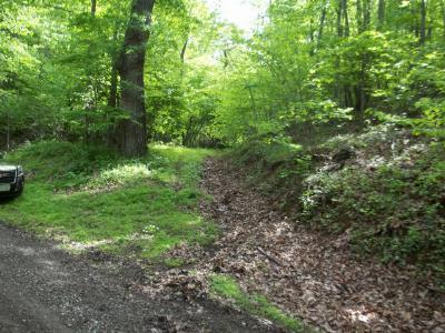 Elk Creek Residential Lots & Land For Sale: Tbd Briar Patch Mountain Road