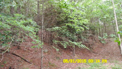 Grayson County Residential Lots & Land For Sale: Tbn Peach Bottom Rd.