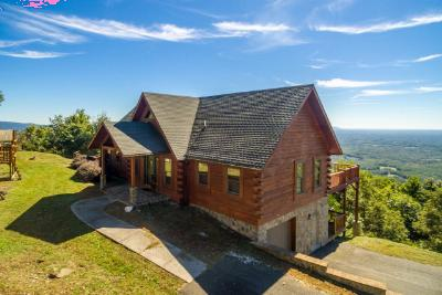 Carroll County Single Family Home For Sale: 225 Reflections Point Trail