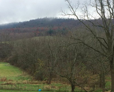 Wytheville Residential Lots & Land For Sale: Tbd Grayson Turnpike