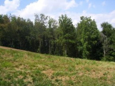Abingdon Residential Lots & Land For Sale: Tbd Cloudview