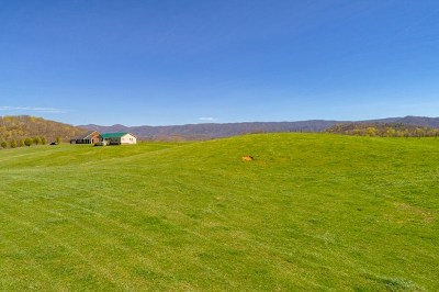 Chilhowie Residential Lots & Land For Sale: Tbd Loves Mill Rd