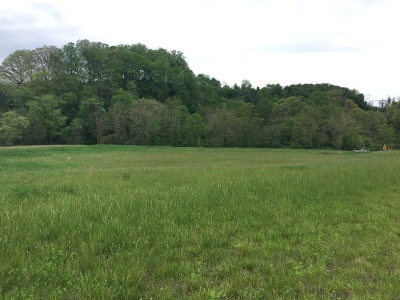 Carroll County, Grayson County Residential Lots & Land For Sale: 420 Creekview Drive