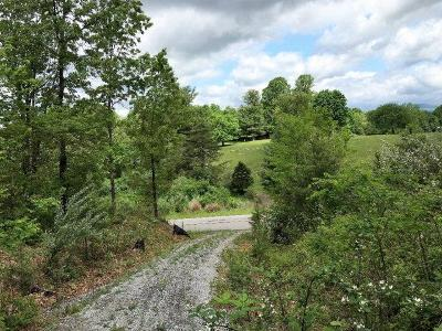 Wytheville Residential Lots & Land For Sale: Lot 4 Barrett Mill Rd