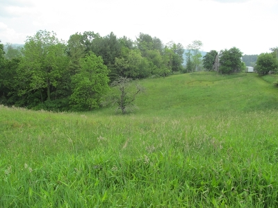 Carroll County, Grayson County Residential Lots & Land For Sale: Tbd 1 Elk Creek Parkway