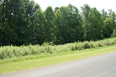 Galax Residential Lots & Land For Sale: Tbd Gambetta Rd