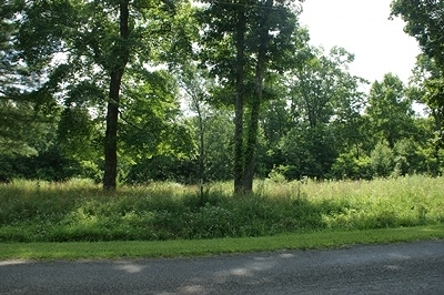 Carroll County Residential Lots & Land For Sale: Tbd Gambetta Rd
