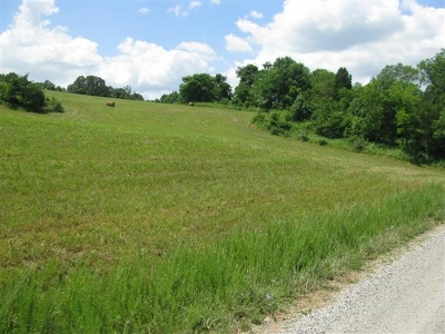 Max Meadows Residential Lots & Land For Sale: Tbd Old Cabin Dr
