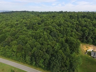 Max Meadows Residential Lots & Land For Sale: Tbd Major Grahams Road