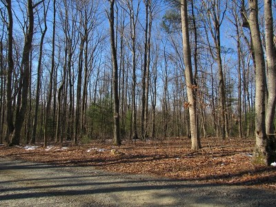 Galax Residential Lots & Land For Sale: Lot 33 Forest Green Dr