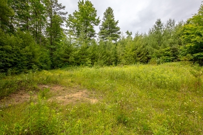 Bland Residential Lots & Land For Sale: Tbd High Ridge Ln.