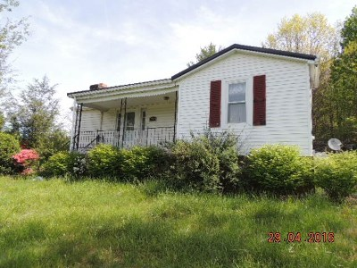 Galax Single Family Home For Sale: 2847 Skyline Hwy