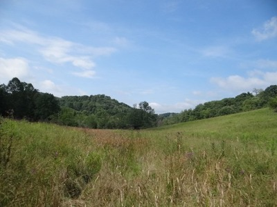 Meadowview Residential Lots & Land For Sale: Lindell Road