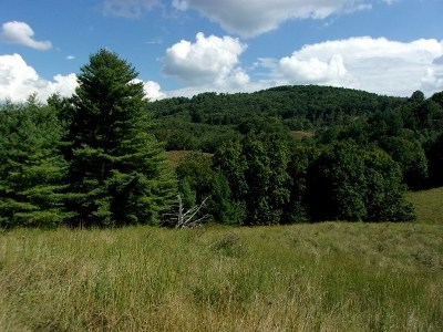 Elk Creek Residential Lots & Land For Sale: Tbd Big Ridge Road