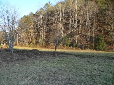 Saltville Residential Lots & Land For Sale: Poor Valley Road