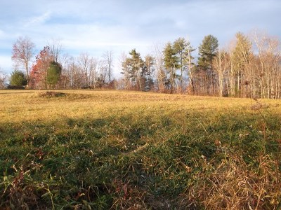 Residential Lots & Land For Sale: Tbd Riverhill Rd
