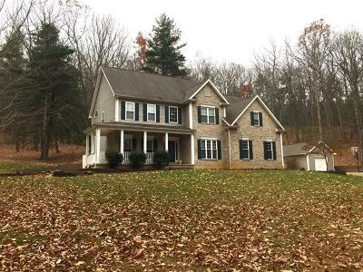 Max Meadows Single Family Home For Sale: 391 Sunny Rd