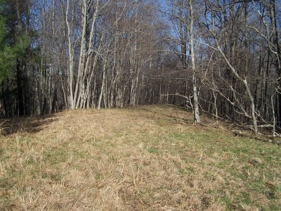 Residential Lots & Land For Sale: Tbd Pleasant Grove Road