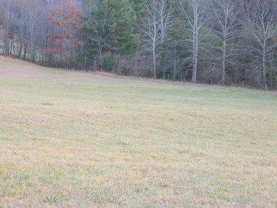 Chilhowie Residential Lots & Land For Sale: Tbd Red Stone Rd.