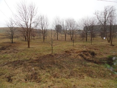 Atkins Residential Lots & Land For Sale: Tbd Hwy 11