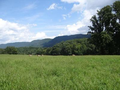 Saltville Residential Lots & Land For Sale: Hayters Gap Road