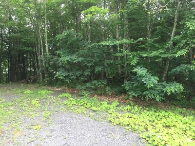 Bland Residential Lots & Land For Sale: Tbd Lot 17
