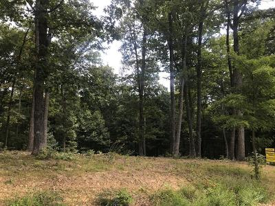 Max Meadows Residential Lots & Land For Sale: Tbd Shady Forest Rd.