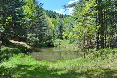 Carroll County, Grayson County Residential Lots & Land For Sale: Tbd Fox Creek Rd.