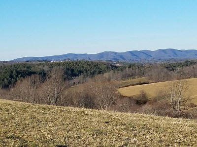Hillsville Residential Lots & Land For Sale: Tbd Floyd Pike