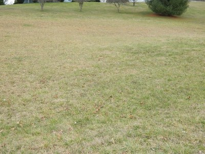 Chilhowie Residential Lots & Land For Sale: Tbd Woodside Dr.