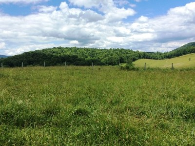 Saltville Residential Lots & Land For Sale: Tbd Burgess Hollow Rd